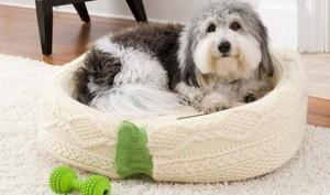 kak-poshit-lezhanku-dlja-sobaki Подстилка для собаки своими руками: выкройка лежанки для собаки