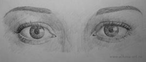 Как правильно нарисовать глаза человека