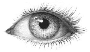 Затеним белок глаза