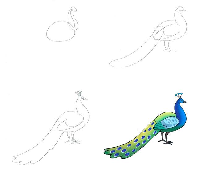 Рисование павлина красками