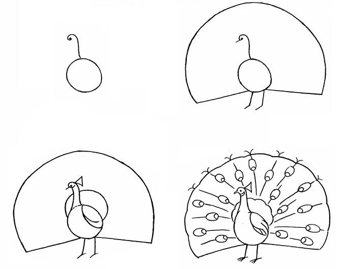 Рисуем павлина пошагово